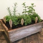 caja madera mini huerto