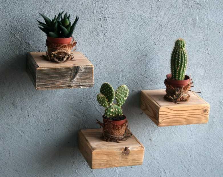 tres repisas pequeñas con plantas en pared